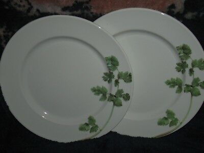 DUDSON Finest Vitrified Made In England 1800-2001 Dinner Plates Lot of 2 EC