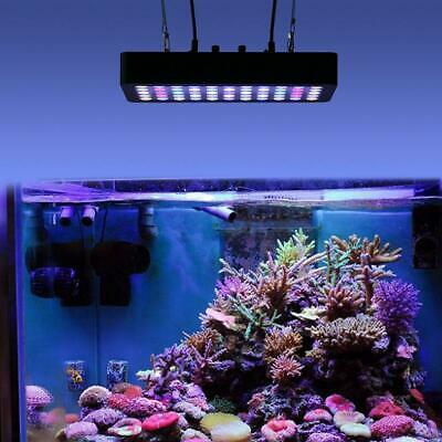 165W 55LED Full Spectrum Dimmable Coral Plant Grow Fish Aquarium Tank Light Lamp
