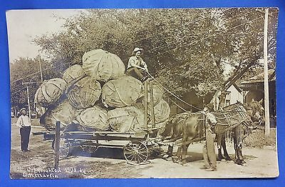 1911 Exaggerated CABBAGE Horse Drawn Wagon RPPC Real Photo POSTCARD Antique