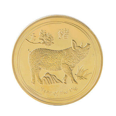 2019 Gold Plated Year of Pig Coin Commemorative Coins Lucky New Year Gifts