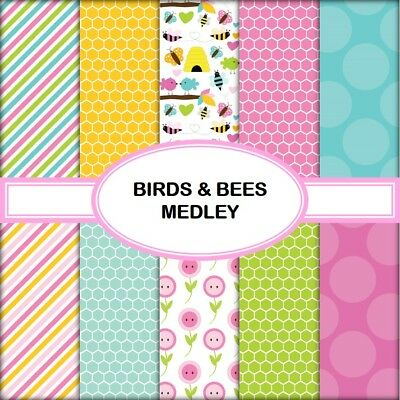 BIRDS & BEES MEDLEY SCRAPBOOK PAPER - 10 x A4 pages