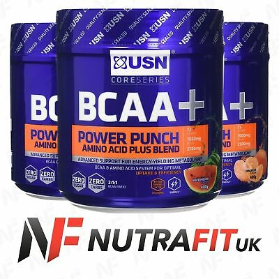 USN BCAA POWER PUNCH amino acid plus powder blend recovery energy 400g