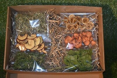 Small Pet Gift Present Natural Dehydrated Fruit and Vegetable Food/ Treats Box.