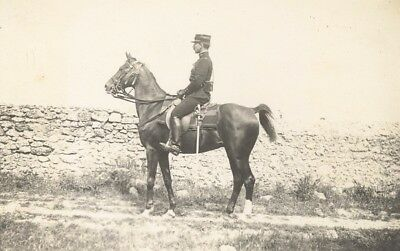 Luneville Military French Horse Lascar old Photo 1912 Cheval Militaire Lascar
