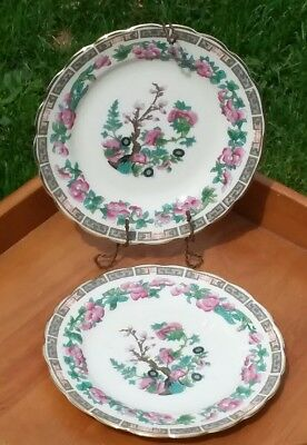 Tuscan China Pair of 2 Bread Plates Indian Tree Pattern c.1900's