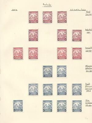 y6646 Barbados on pages / A Small Collection  Early & Modern  Mint