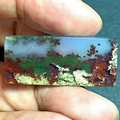 41ct AAA NATURAL Green Brown RED GARDEN MOSS AGATE ~3D Landscape PICTURE~