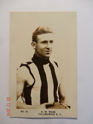 Reynolds WEBB-(Collingwood)-1923 Magpie Cigarettes Card No. 10 - Very Good