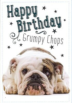 Cute Funny Birthday Card With Grumpy Looking Bulldog For A Dog Lover Male