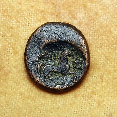 Extremely Rare Apulia, Bronze,Arpi. Zeus and Horse. Ancient Greek Coin. Scarce