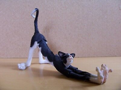Country Artists A Breed A Part Mini Cat Stretching