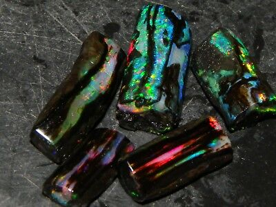 Nice Black Fossil Opal Rough/Rubs 24cts Indonesia Multicolours Crystal/Specimens