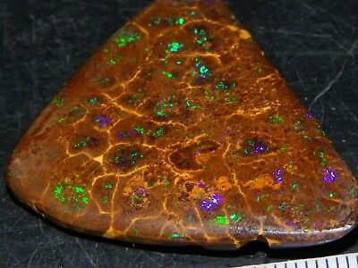 Very Nice Opalton Matrix Opal Cab 45.5cts Green/Blue/Purple Fires all over :) NR