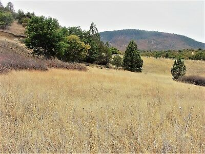Stunning 1 acre Lot in Klamath River Country Estates Subdivision