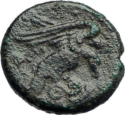 KROTON in BRUTTIUM Genuine Ancient 350BC Greek Coin HERCULES EAGLE SNAKE i73830