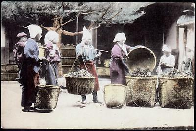 Japan c.1907-10's -Tea Workers bringing leaves to be weighed and recorded - H/c