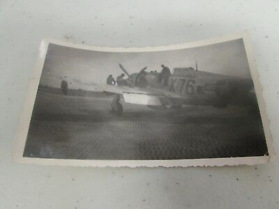 WWII US Army Air Corps 87th fighter squadron original period picture   #37