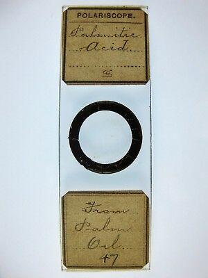 Antique Microscope Slide by C.S? Chemical crystals. Palmitic Acid from Palm Oil.