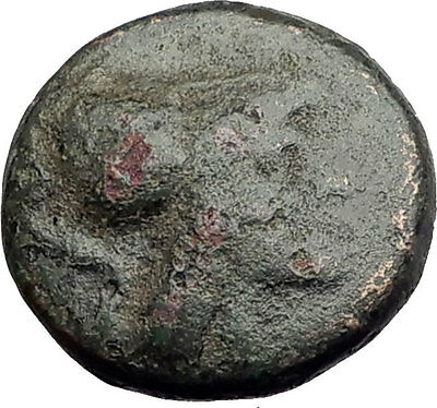 Antigonos II Gonatas 274BC Macedonia Ancient Greek Coin ATHENA PAN TROPHY i62594
