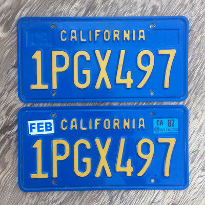 STICKER WELLS, PAIR in YELLOW, Display Year & Month Tags on
