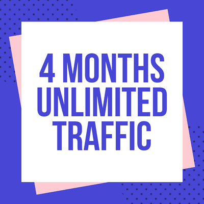4 Months Unlimited Real Web Traffic Hits For Your Website 120 Days + Live Stats
