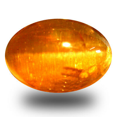 9.43 ct AAA  Oval Cabochon (13 x 9 mm) Honey Brown Green Apatite Cat's Eye