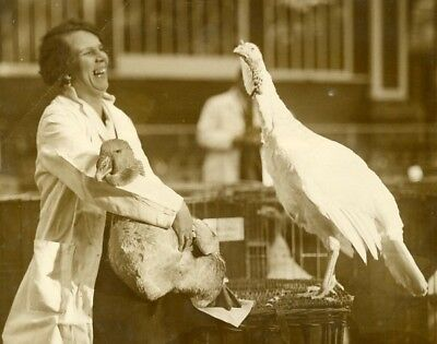 Crystal Palace Poultry show Goose & Turkey Farm Girl Oie & Dinde old Photo 1929'