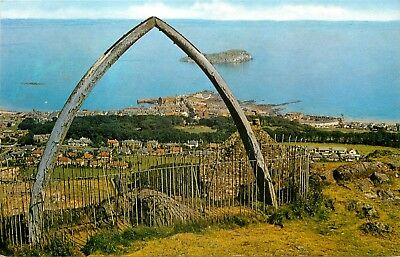 p0703 View form Whales Jaw, North Berwick, Scotland postcard *COMBINED SHIPPING*
