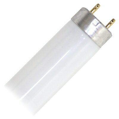 "Eiko 15521-1 F15T8/CW Straight T8 Cool Fluorescent Tube Light Bulb, 18"" Long,"