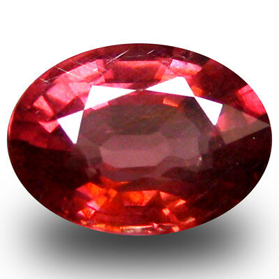 1.26 Ct AAA+ Charmantes Ovale (7 X 6 mm) Rosé Rouge Grenade Rhodolite Libre