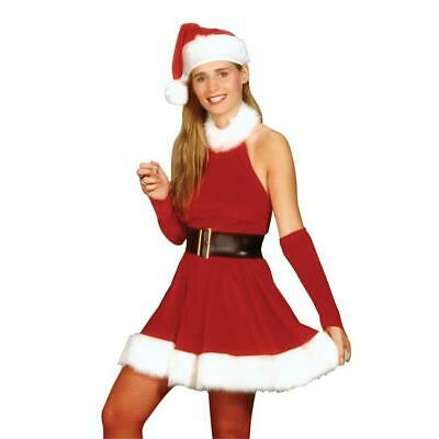 Costumes For All Occasions RU25520SM Small Santas Inspiration