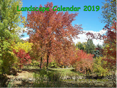 Nature Calendar 2019—Landscapes Beauty—Photos Scenic Western Usa—Terrific Gift