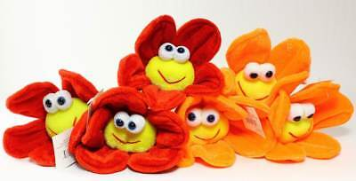 Plush Daisy Flowers Smiling Happy Face 6 Pack Variety