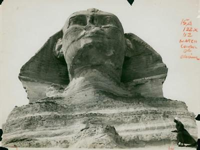 Great Sphinx of Giza - Vintage photo