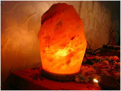 Hand Crafted Natural Crystal Himalayan Salt Lamp with Wood Base Cord Switch Bulb