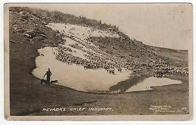 NEVADA CHIEF INDUSTRY RPPC Real Photo Postcard ANIMALS Winnemucca NV Moore Stone