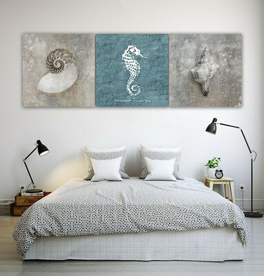 "Modern Canvas Painting Photo Print Home Decor Wall Art Shell Seahorse 16x16""x3pc"