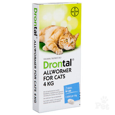 NEW Bayer Drontal for Cats Kitten 4 Tablets Tapeworm Dewormer Roundworm