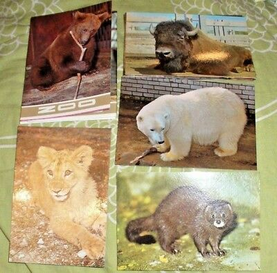 15 X Cards Folder With Tallinn Estonia Zoo Animals From 1989
