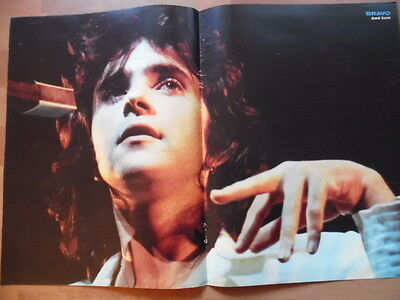 DAVID ESSEX Bravo Mittel-Poster 43 x 28 cm Clipping 239