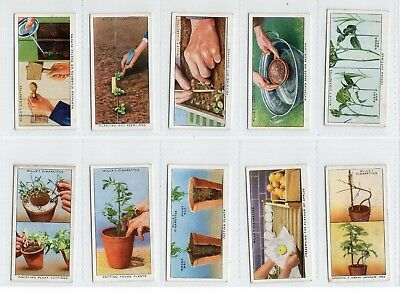 Complete Set of 50 Vintage Garden Hints Trade Cards from 1938