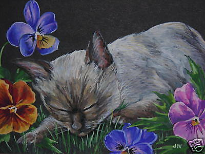 ACEO Siamese Cat kitten animal Pansy print of painting