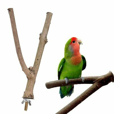 Bird Pet Parrot Claw Grinding Stick Flat Stand Platform Perch Cage Decor To YE
