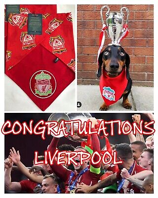 Liverpool FC Football Team Club Dog Bandana Scarf & Patch Red White XS S M L XL