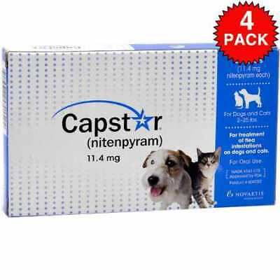 4 PACK CAPSTAR Blue  225 lbs 24 tablets