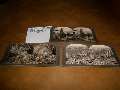 3 Antique Stereoscope Picture Cards Early 1900's Keystone California Mission ++