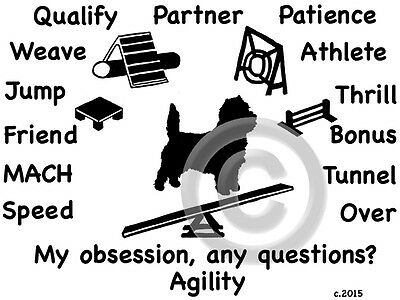 Cairn Terrier Dog Agility Equipment Obsession,Questions? T-shirt  size color