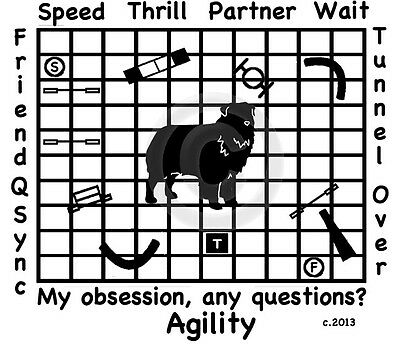Australian Shepherd Dog Agility My Obsession,  Questions?T-shirt Our Original