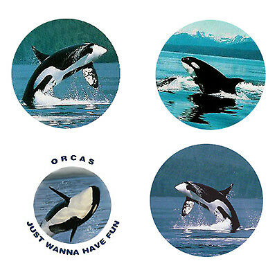 Orca Whale Magnets B: 4 Orcas for your Fridge or Collection-A Great Gift