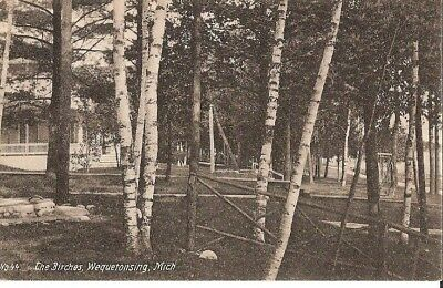 "Vintage Postcard Wequetonsing Michigan ""The Birches"""